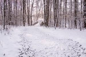 DSC_5339 bridge in snow revised