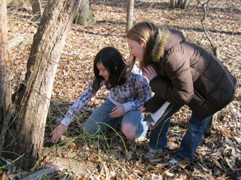 forestgirls