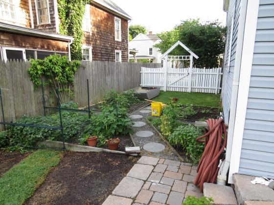 Cario backyard