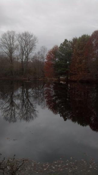 Farm Pond Pickering Creek 2015